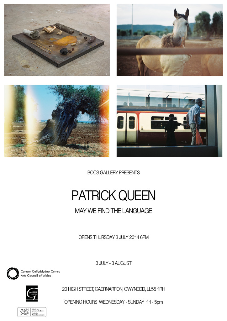Patrick Queen – May We Find the Langauge